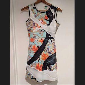 Clover Canyon printed neoprene dress